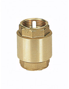 "Check valve 1"" 1010 PL - 1"